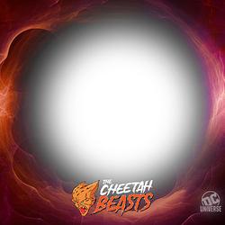 cheetah_fb_frame_v1_200227