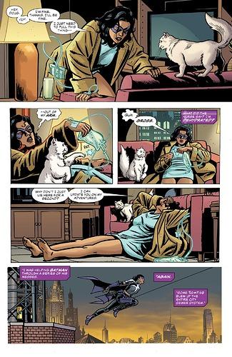 Batman-Secret-Files-Huntress-1-5