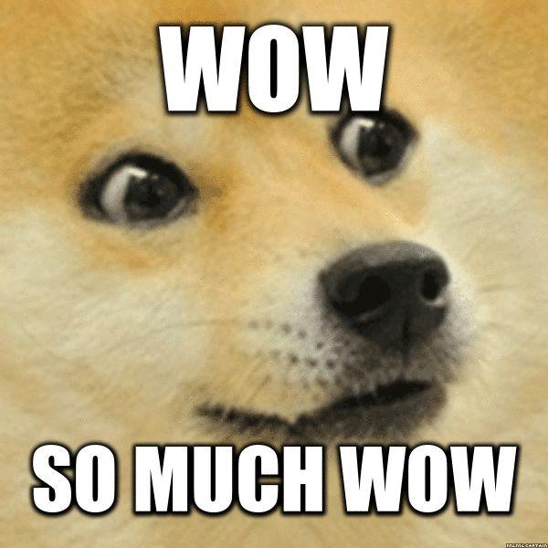 21-Much-Wow-Dog-Meme