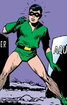 Robin sans tunic