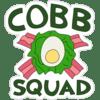 :cobb_squad: