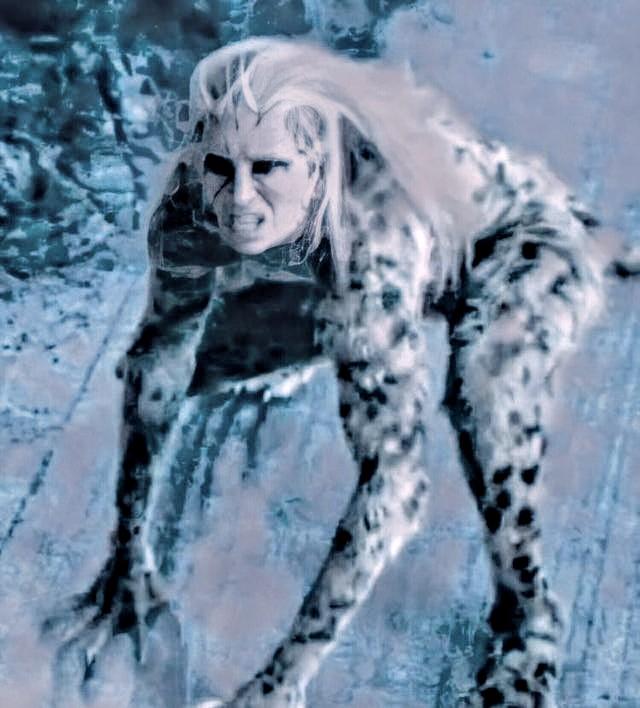 cheetah-2-ww84~2